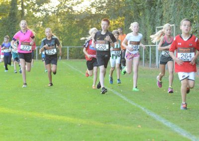 Run-for-Joyce-2016-leusink (24)