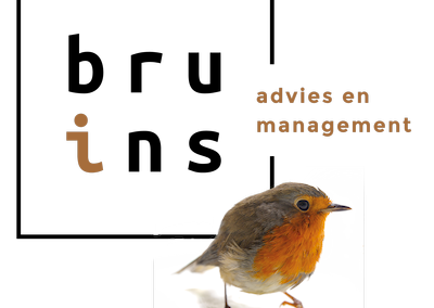Bruins Advies en Management